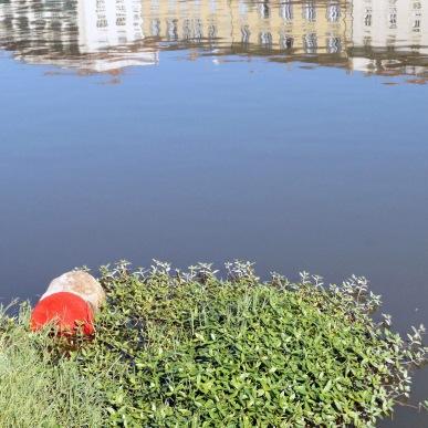 Flood'sMemory|PicAFaggioni11