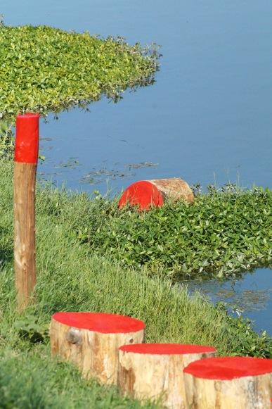Flood'sMemory|PicAPiras3